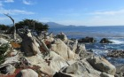 california 17-mile-drive